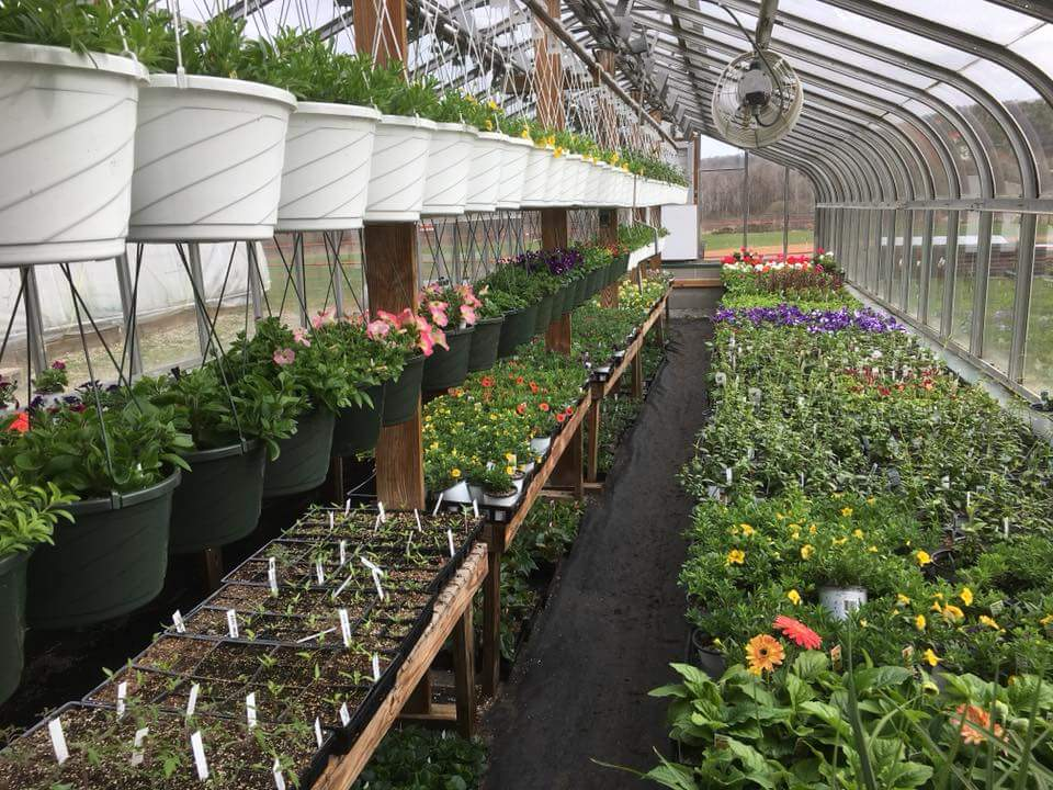 Brockway FFA Greenhouse