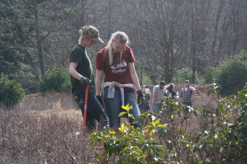 Penn State DuBois Wildlife Tree Planting Trout