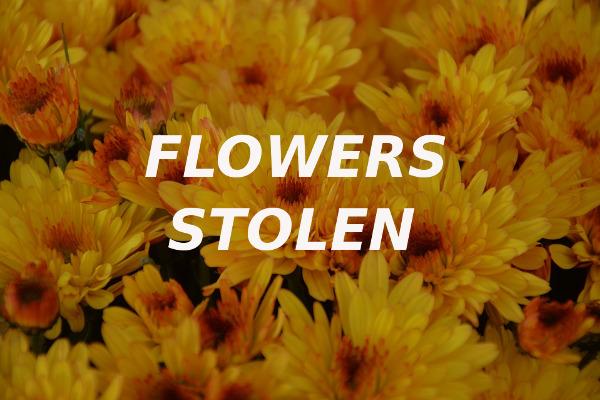 flowers stolen