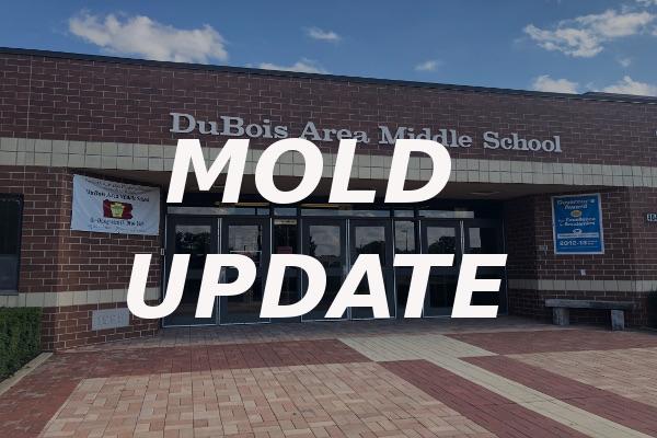 mold update