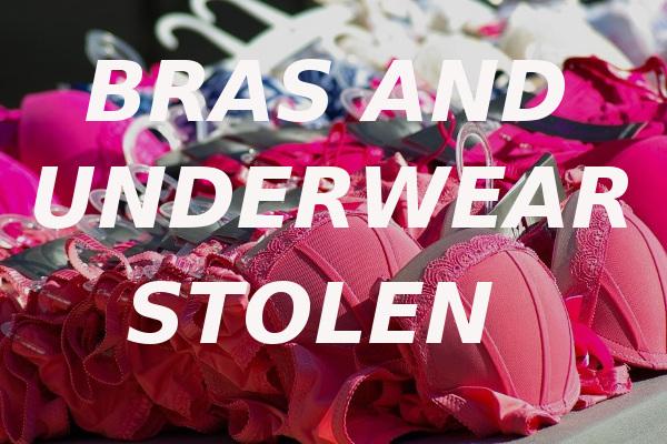 bras and underwear stolen