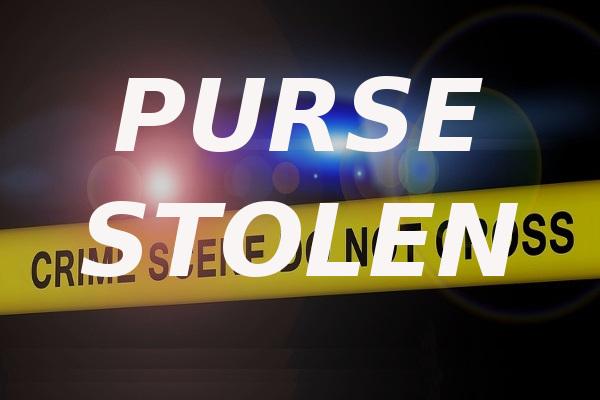 purse stolen