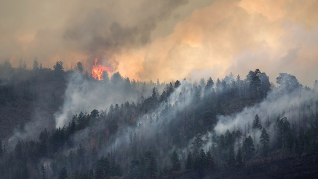 Exploding trees caused California wildfires; Trump remarks draw Biden's ire