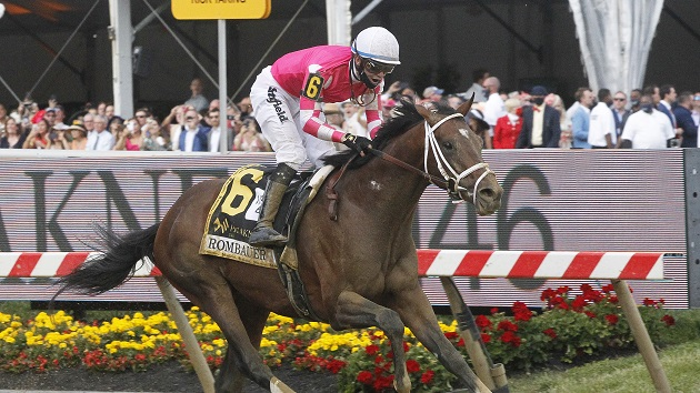 Horsephotos/Getty Images