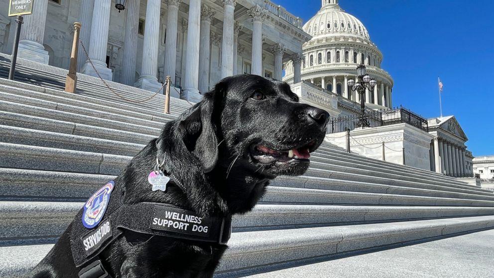 U.S. Capitol Police